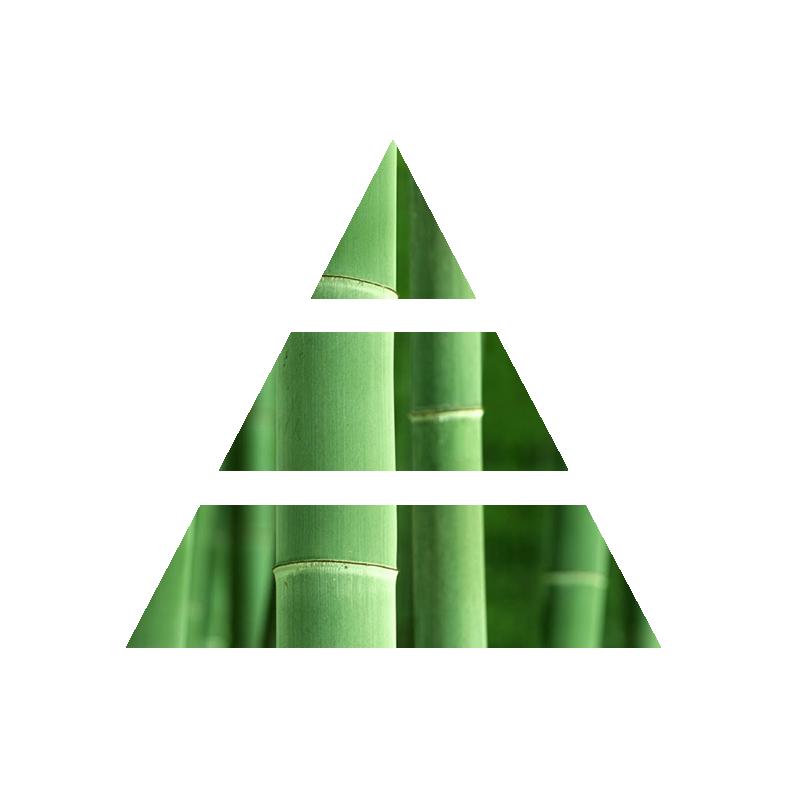 bamboo leaves diffusore fragranza per la casa fragranza fresca