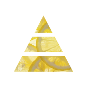 fresh lemon diffusore per la casa fragranza fresca profumo di pulito