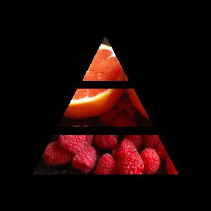 fragranza moonlight piramide olfattiva my fragrances