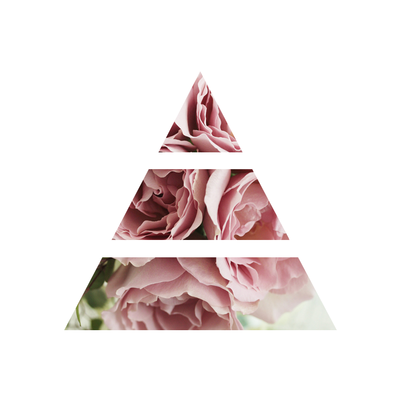 fragranza sweet peonia piramide olfattiva my fragrances